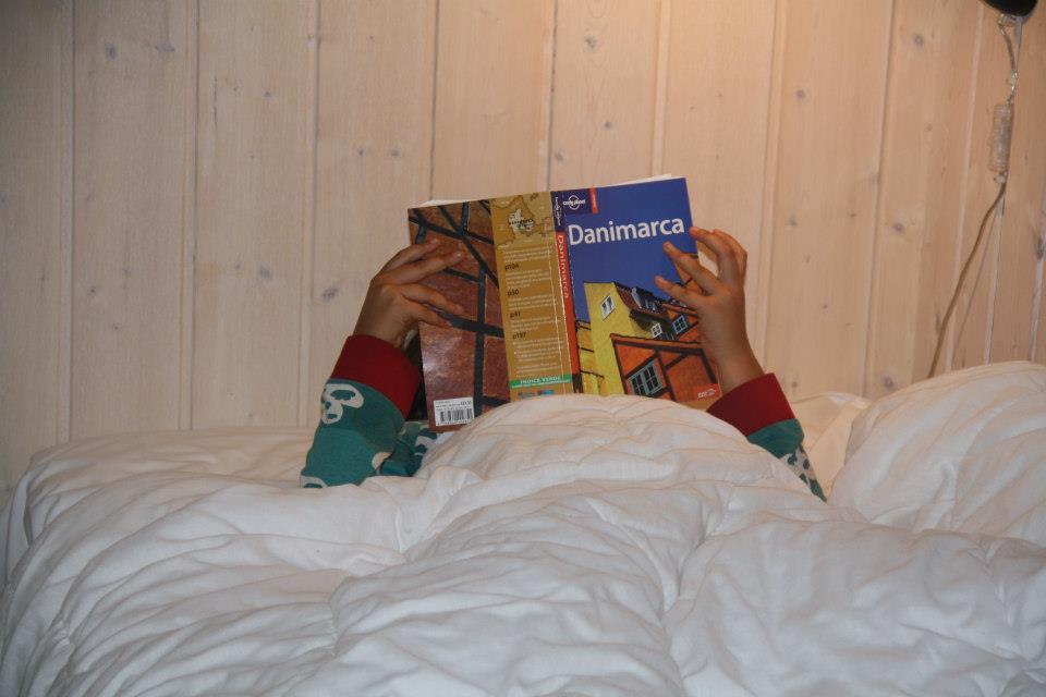 Il viaggio in Danimarca – unacarrellata